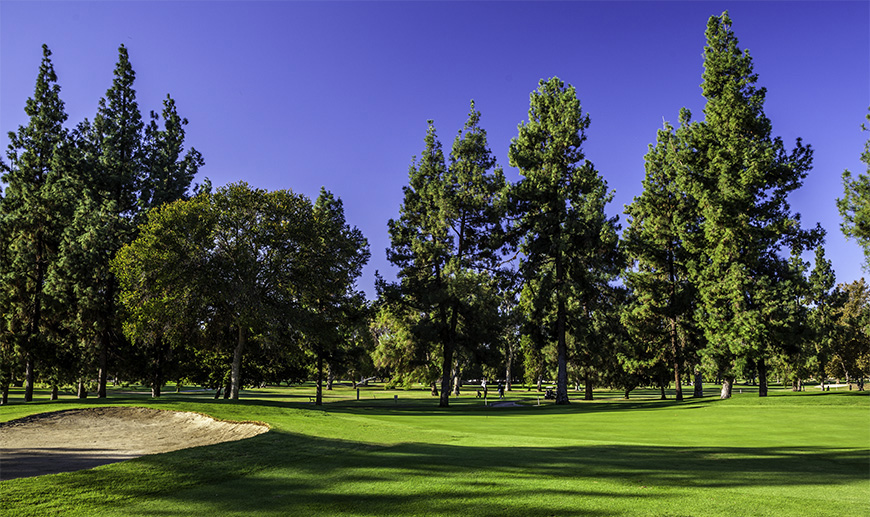 Best Encino Golf Course